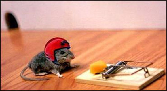 Intelligent Mouse